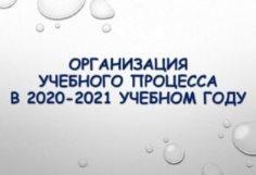 Организация учебного процесса в 2020-2021 году
